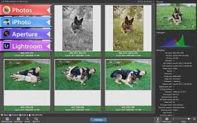 PhotoSweeper X 3.8.2 Crack With License Code 2020 Free Download